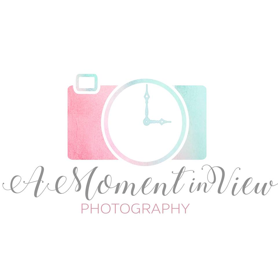 A Moment In View Photography
