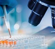 Microscope Research Blog